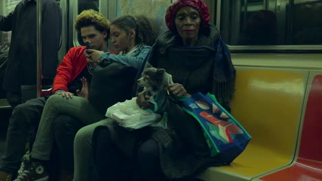 A-woman-with-a-small-dog-on-her-lap-rides-the-New-York-city-subway