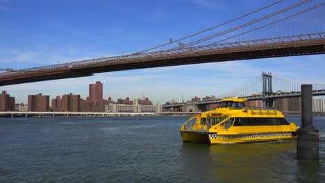 Ein-New-York-City-Water-Taxi-Cross-Vor-Der-Brooklyn-Bridge