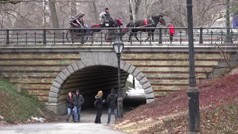 Horse-drawn-carriage-moves-across-a-bridge-in-New-York-s-Central-park