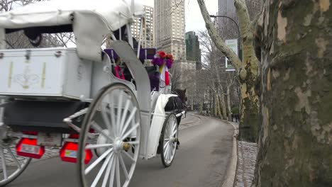 Horse-drawn-carriages-move-through-Central-Park-in-New-York-city-1