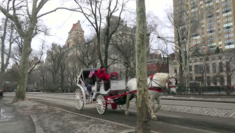 Horse-drawn-carriages-move-through-Central-Park-in-New-York-city-2