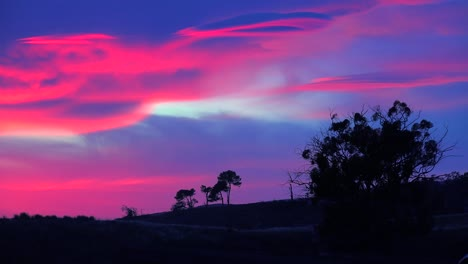 A-beautiful-otherworldly-sunrise-or-sunset-along-the-California-coast-with-a-silhouetted-tree-in-foreground-2