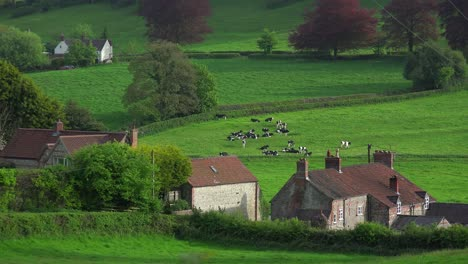 Very-quaint-cottages-make-up-a-rural-village-in-England-Ireland-Wales-or-Scotland