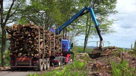 A-claw-loads-lumber-onto-a-semi-truck-in-a-deforested-area