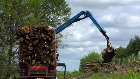 A-claw-loads-lumber-onto-a-semi-truck-in-a-deforested-area-2