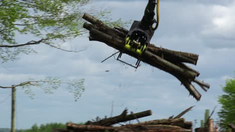 A-claw-loads-lumber-onto-a-semi-truck-in-a-deforested-area-3