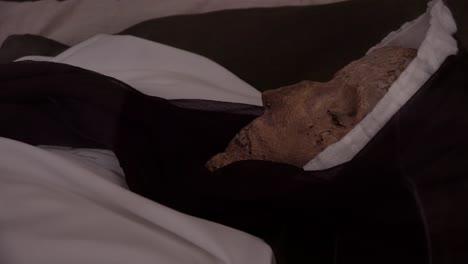 Eine-Weibliche-Mumie-Ist-In-Einer-Krypta-In-Vac-Ungarn-Sehr-Gut-Erhalten