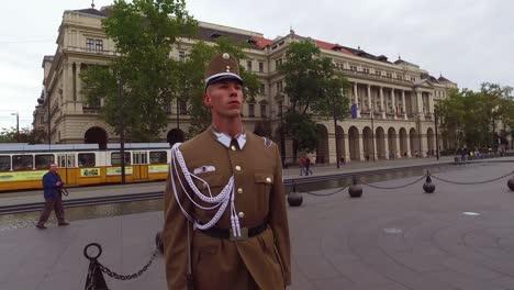 Ungarische-Palastwache-Steht-In-Budapest-Ungarn-Stramm-1