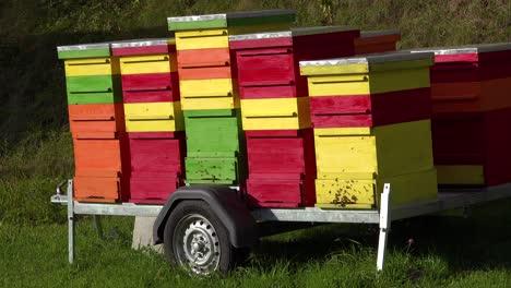 Cajas-De-Abejas-Multicolores-Sentarse-En-Un-Remolque-En-Eslovenia