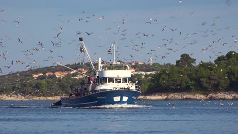 A-modern-fishing-boat-comes-into-port-with-hundreds-of-seagulls-in-pursuit-1