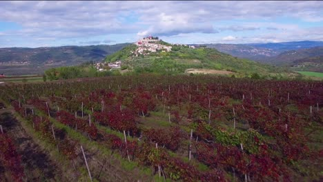 Gorgeous-aerial-of-a-small-Croatian-or-Italian-hill-town-or-village-with-vineyards-foreground-1
