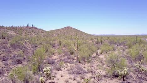 Aerial-shot-over-cactus-in-Saguaro-national-Park-near-Tucson-Arizona-2