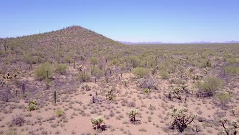 Aerial-shot-over-desert-cactus-in-Saguaro-National-Park-near-Tucson-Arizona