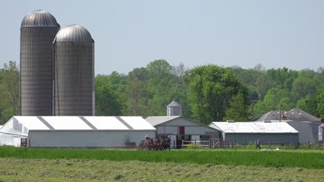 Amish-farmers-use-traditional-horses-methods-to-plow-their-fields