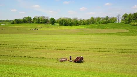 Una-Antena-De-Granjeros-Amish-Cuidando-Sus-Campos-Con-Caballos-Y-Arado-