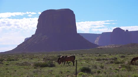 Horses-graze-with-the-natural-beauty-of-Monument-Valley-Utah-in-the-background-1