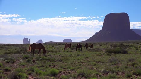 Horses-graze-with-the-natural-beauty-of-Monument-Valley-Utah-in-the-background-2