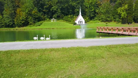Aerial-over-swans-on-a-lake-in-front-of-a-romantic-and-beautiful-small-church-in-the-American-wilderness-West-Virginia