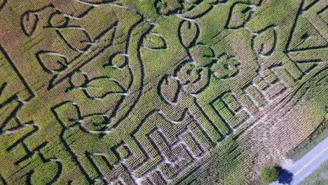 An-aerial-over-a-vast-corn-maze-on-a-Michigan-farm-4