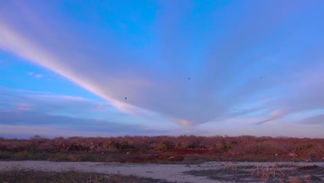 A-wide-angle-of-the-Galapagos-Islands-with-birds-flying-above