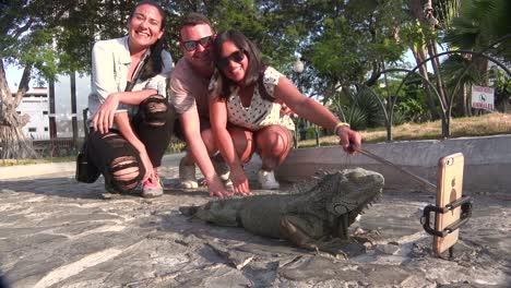 La-Gente-Toma-Un-Selfie-Posando-Con-Una-Iguana-En-Un-Parque-Público-En-Guayaquil-Ecuador