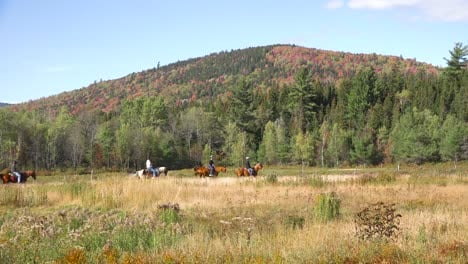 Horses-and-riders-move-through-the-wilderness-near-Mt-Washington-New-Hampshire