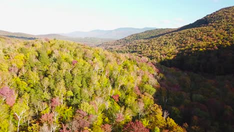 Aerial-over-vast-forests-of-fall-foliage-and-color-in-Vermont-or-New-England