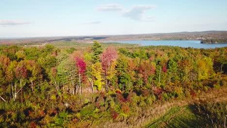Antenne-über-Weite-Wälder-Mit-Herbstlaub-Und-Farben-In-Maine-Oder-Neuengland