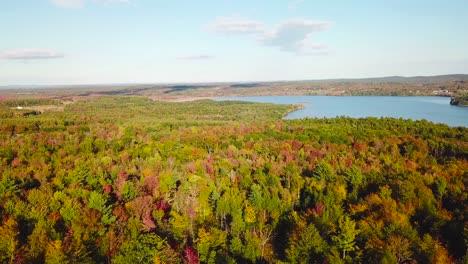 Antena-Sobre-Vastos-Bosques-De-Follaje-Y-Color-Otoñales-En-Maine-O-Nueva-Inglaterra-1