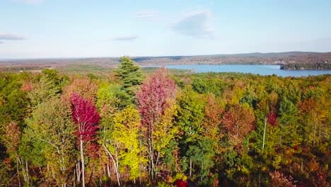 Vista-Aérea-over-vast-forests-of-fall-foliage-and-color-in-Maine-or-New-England-2