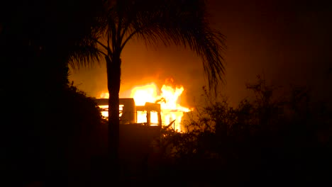 Wide-shot-through-palm-trees-at-night-during-the-2017-Thomas-fire-in-Ventura-County-California