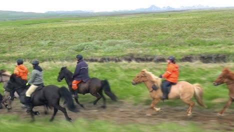Hermosa-Foto-De-Viaje-De-Caballo-Pony-Islandés-Y-Jinetes-En-La-Campiña-De-Islandia