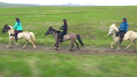 Hermosa-Foto-De-Viaje-De-Caballo-Pony-Islandés-Y-Jinetes-En-La-Campiña-De-Islandia-1