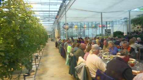 Interior-establishing-shot-of-an-Iceland-greenhouse-using-geothermal-hot-water-to-grow-fruits-and-vegetables-with-tourists-in-dining-room
