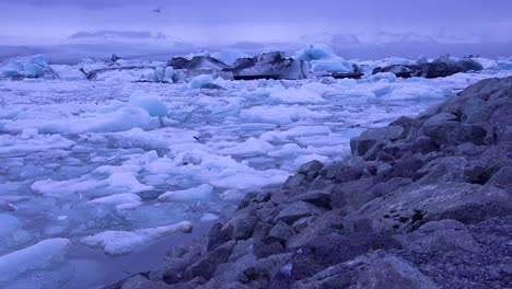 Icebergs-sit-in-a-glacial-bay-suggest-global-warming-in-the-Arctic-at-Jokulsarlon-glacier-lagoon-Iceland-night