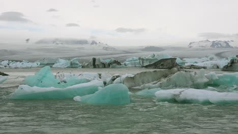 Icebergs-and-Arctic-tern-birds-in-a-river-in-the-frozen-Arctic-Jokulsarlon-glacier-lagoon-in-Iceland-1
