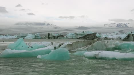 Icebergs-and-Arctic-tern-birds-in-a-river-in-the-frozen-Arctic-Jokulsarlon-glacier-lagoon-in-Iceland-2