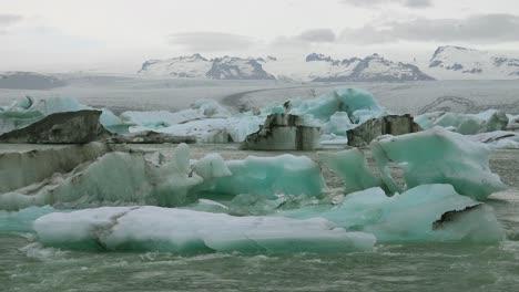 Icebergs-and-Arctic-tern-birds-in-a-river-in-the-frozen-Arctic-Jokulsarlon-glacier-lagoon-in-Iceland-3