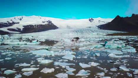 Slow-aerial-across-the-massive-glacier-lagoon-filled-with-icebergs-at-Fjallsarlon-Iceland-suggests-global-warming-and-climate-change-11