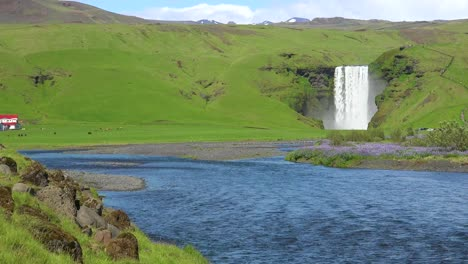 The-beautiful-Sk_____-gafoss-waterfall-in-iceland-falls-over-a-spectacular-cliff