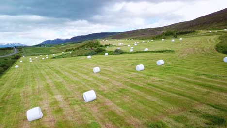 An-aerial-over-large-white-bales-of-hay-wrapped-in-plastic-cylinders-like-marshmallows-in-the-fields-of-Iceland-2