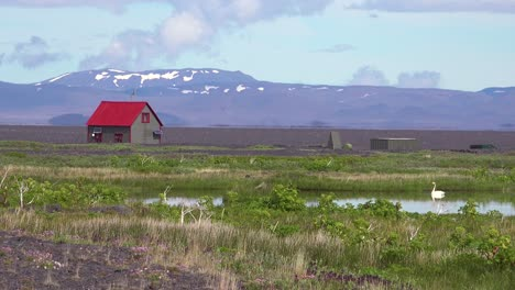 A-remote-house-or-structure-in-Iceland-interior-highlands-with-swan-on-lake-nearby