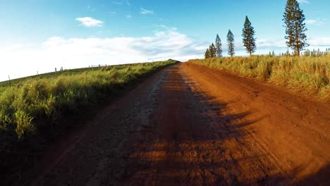 POV-from-the-front-of-a-vehicle-traveling-on-a-very-rutted-dirt-road-on-Molokai-Hawaii-from-Maunaloa-to-Hale-o-Lono-2