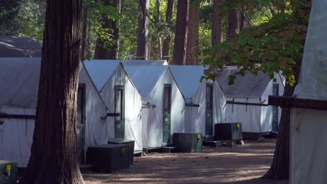 Model-Released-camper-walks-through-the-a-row-of-white-canvas-tents-at-Curry-Village-Yosemite-Valley-National-Park-California