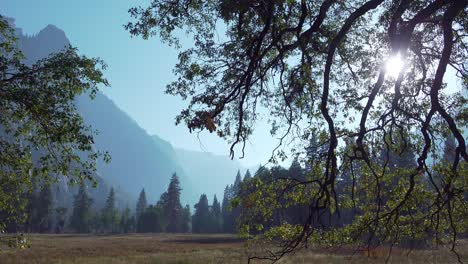 Pan-Horizontal-En-El-Valle-De-Yosemite-Con-Un-Resplandor-Solar-Una-Silueta-De-árboles-Y-Formaciones-De-Paredes-Rocosas-Yosemite-Np-Ca