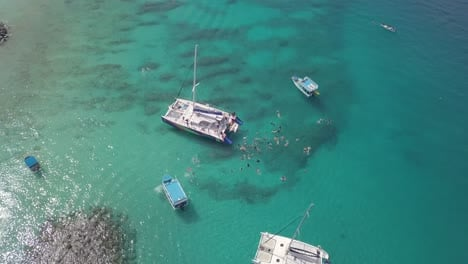 Aerial-tilt-down-of-large-group-of-tourists-snorkling-and-diving-on-the-Caribbean-island-of-Barbados-off-a-large-catamaran-boat