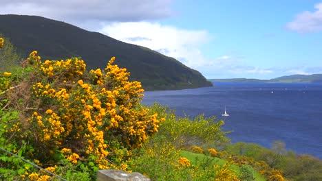 An-establishing-shot-of-Loch-Ness-Scotland