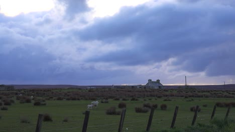 Dark-clouds-form-over-a-farm-during-an-impending-storm-in-Northern-Scotland