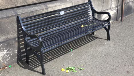 Crushed-flowers-sit-on-the-ground-in-front-of-an-empty-park-bench