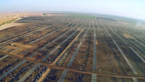Aerial-over-a-vast-cattle-ranch-and-slaughterhouse-in-Central-California